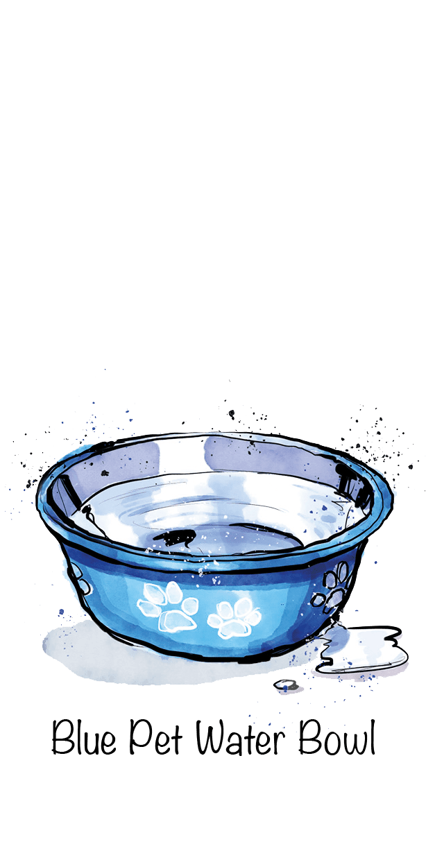Blue Pet Water Bowl