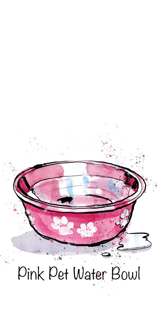 Pink Pet Water Bowl