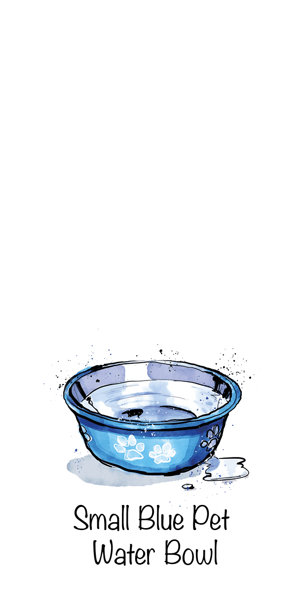 Small Blue Pet Water Bowl