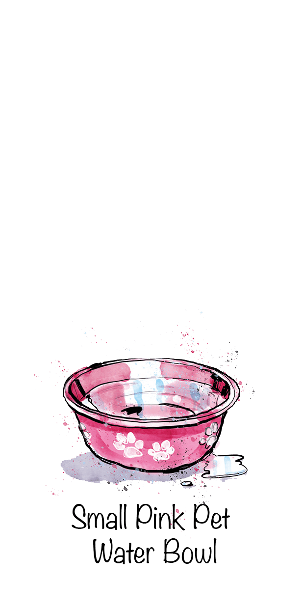 Small Pink Pet Water Bowl